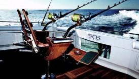 Game Fishing